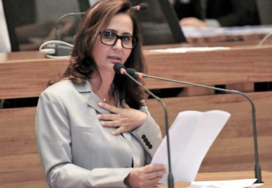 Fábio Rivas/CLDF