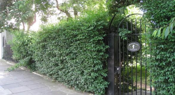 """Relembrando cena do filme """"Um Lugar Chamado Notting Hill"""" (1999), Fábio Flora fala sobre momentos que ajudam a escapar do peso da rotina"""