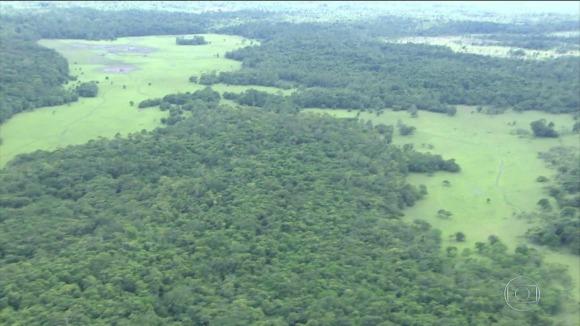 Governo recua e anuncia novo decreto para mineração em reserva na Amazônia