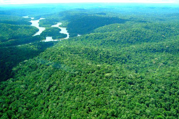 Debates sobre fim de reserva na Amazônia foram 'amplamente noticiados', diz ministério
