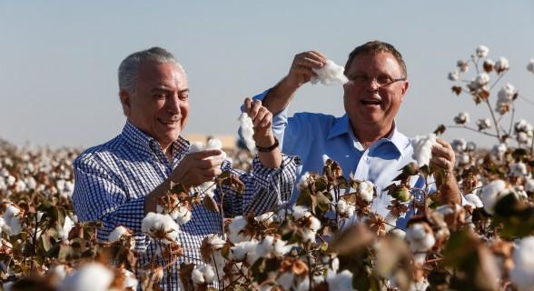 Temer e o ministro da Agricultura, Blairo Maggi, na abertura da colheira do algodão em Mato Grosso, nessa sexta-feira (11)