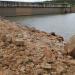 Principal reservatório de Brasília, o Descoberto chegou nesta segunda-feira (23) ao seu limite mínimo estipulado pela Adasa para o mês de outubro