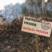 Área de reserva legal desmatada ilegalmente em terras vizinhas ao PDS Virola-Jatobá