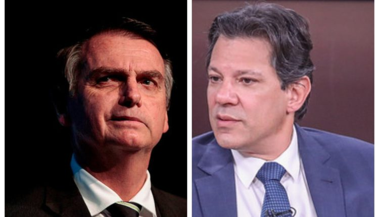 Datafolha: Bolsonaro é o único a crescer e vai a 35%; Haddad tem 22%