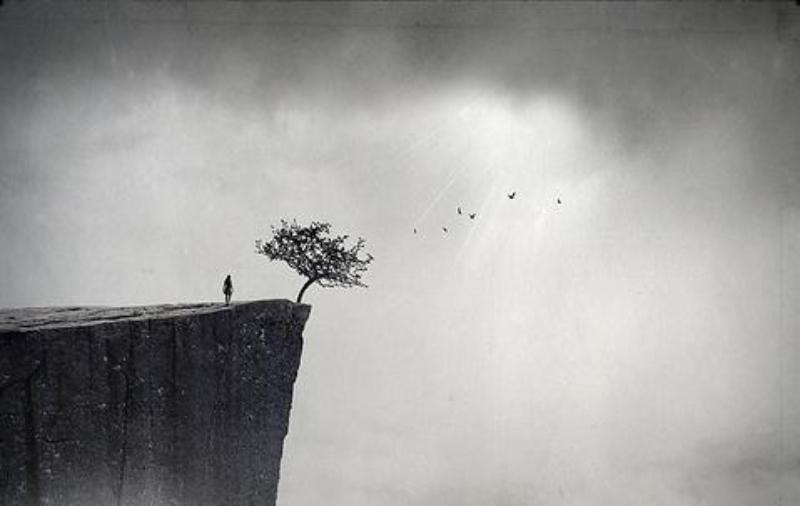 Ampliar a imaginação para conquistar a liberdade: foi o que nos restou - Reprodução