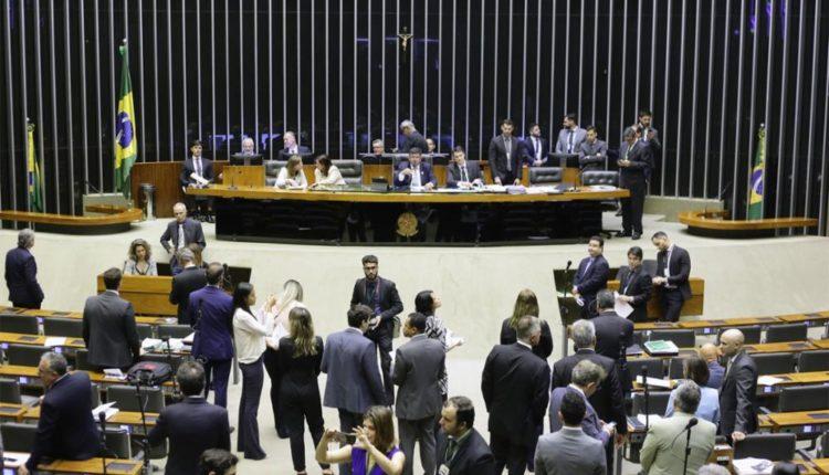 Câmara. Plenário aprova aumento de pena para maus tratos a animais; projeto segue para o Senado