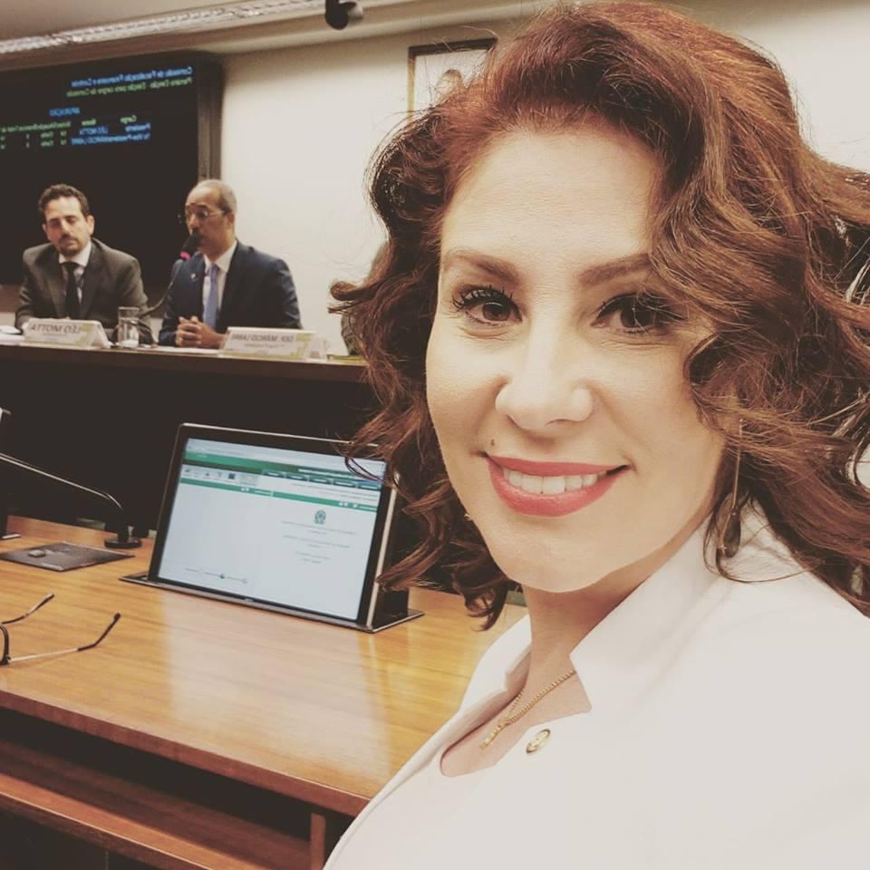 """Carla Zambelli (PSL-SP) – """"Não é preciso contratar empresas de consultoria""""."""