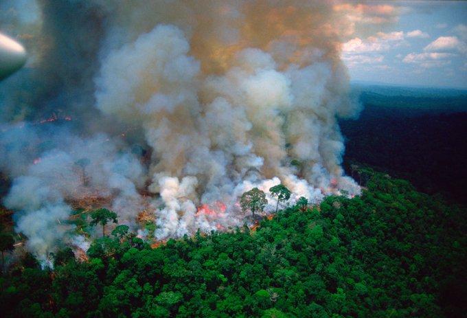 """Nossa casa está queimando"""", afirma Macron sobre incêndios na Amazônia   Congresso em Foco"""