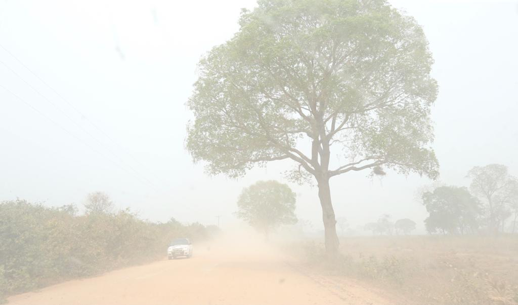 Comitiva de deputados começa visita às queimadas no Pantanal. Veja fotos