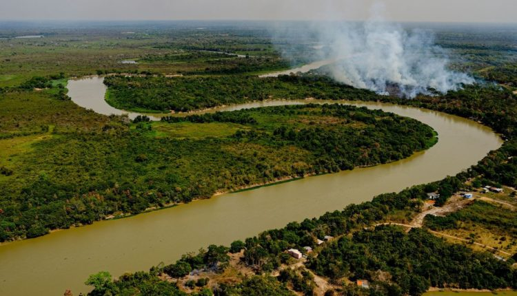 Pantanal em chamas [fotografo]Mayke Toscano/Secom-MT[/fotografo]